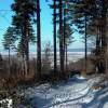 Őszi-Téli ajánlat